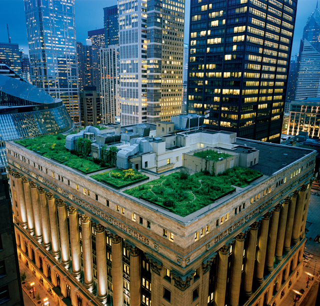 Chicago's City Hall Rooftop Garden