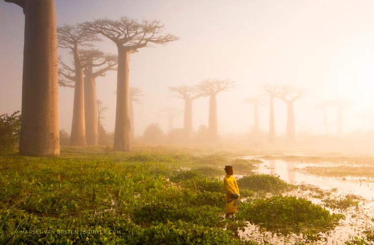 National-Geographic-photos-of-the-day-2015-4
